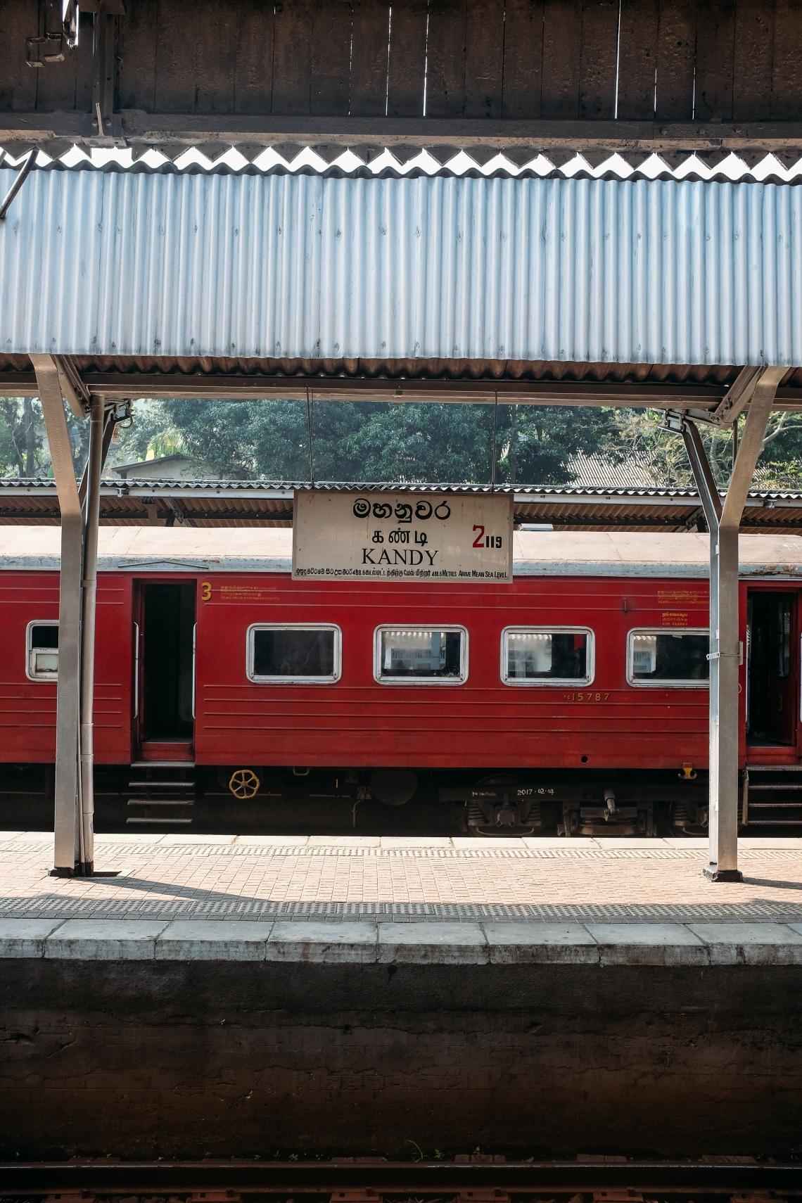 DSCF6626