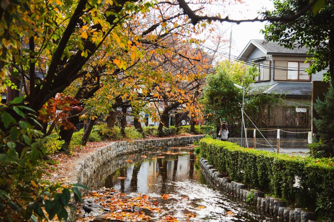 Kyoto_8485