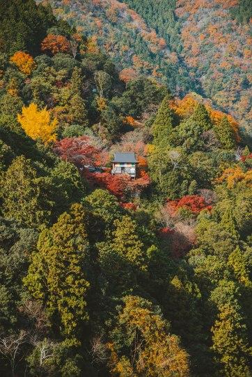 Kyoto_9003