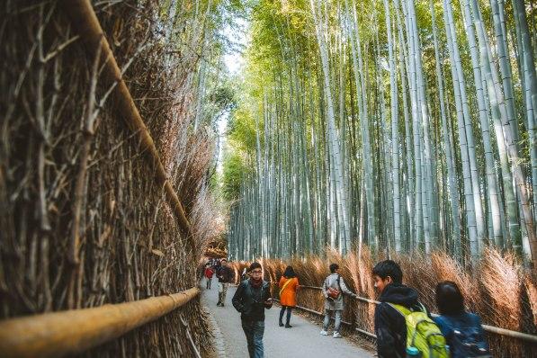 Kyoto_9023
